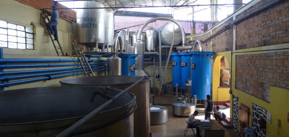 Overview of Arette Distillery with copper stills